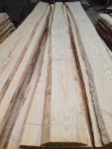 France Hardwood Logs - 50 à 80 cm White Ash Veneer Logs from France
