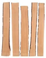 Fordaq wood market - Beech lumber, steamed, unedged