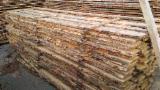 最大的木材网络 - 查看板材供应商及买家 - 疏松, 苏格兰松