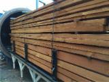 Servizi/Produzione Strutture in Legno per Costruzioni - Legno Trattato, Ungheria