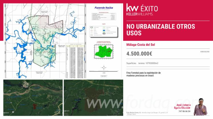 10-700-Hectares-Of-Brazil