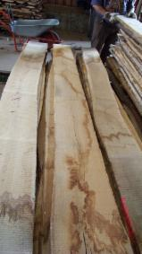 Hardwood  Unedged Timber - Flitches - Boules - Unedged AD/ KD Oak Lumber, 20-27 mm, PEFC