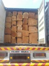 Doussie Hardwood Logs - 0.5 m Doussie Square Logs from Nigeria