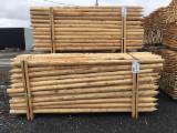 Trouvez tous les produits bois sur Fordaq - Mobilier Rustique - Piquets, tuteurs, poteaux, pieux, rondins de Cèdre Blanc de L'Est (Thuya Occidental)