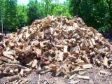 Ogrevno Drvo - Drvni Ostatci Zahtjevi - Hrast Drva Za Potpalu/Oblice Cepane Ukrajina