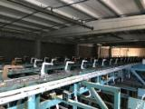 Sweden Woodworking Machinery - Board sorting line, dray sorter