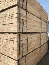 Furnierschichtholz - LVL Radiata Pine - Radiata Pine LVL For Furniture, Radiata Pine