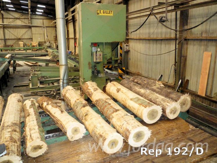 Used E. GILLET TO 1400 GI - DG 20/09/99 Log Band Saw Vertical For Sale France