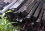 Finden Sie Holzlieferanten auf Fordaq - COURTEX-MADERAS TROPICALES S.L. - 4-seitig Sägegestreiftes Rundholz, Ebony