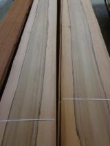 Find best timber supplies on Fordaq - Holz-Schnettler Soest Import – Export GmbH - Architectural Pearwood Core