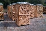 Firewood/Woodlogs Not Cleaved - Firewood Oak , Spruce , Pine , Birch , Ash from Ukraine