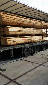 Dulapi-cherestea Netivita - Vand Dulapi - Cherestea Netivită Stejar 52 mm