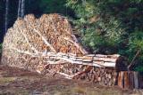薪材、木质颗粒及木废料 - 劈切薪材 – 未劈切 碳材/开裂原木 冷杉, 苏格兰松, 云杉