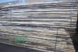 锯材及结构木材 - 疏松, 橡木