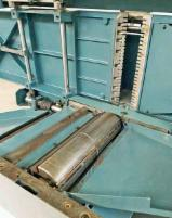 Surfacer And Thicknesser - Used Paoloni DR415 1999 Surfacer And Thicknesser For Sale Italy