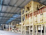 Produkcja Płyt Wiórowych, Pilśniowych I OSB Shanghai Nowe Chiny