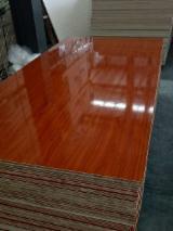 Plywood  - Fordaq Online market - Blockboard
