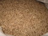Offers Turkey - Premium quality Beech wood pellets