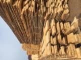 Russia - Furniture Online market - Tilia  Half-Edged Boards
