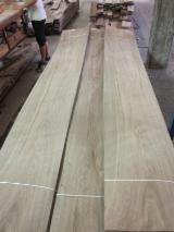 希腊 - Fordaq 在线 市場 - 天然木皮单板, 核桃, 平切,平坦