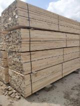 Schnittholz - Besäumtes Holz Zu Verkaufen - Kiefer  - Föhre, 1000 m3 pro Monat