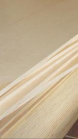 Veneer and Panels - Poplar Solid Wood Panel