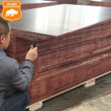 null - Brown Film Faced Plywood/ Shuttering Plywood/