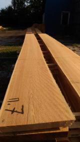 Europe Unedged Timber - Boules - Siberian Larch Loose 50; 54 mm from Russia