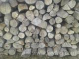 Firewood, Pellets And Residues Firewood Woodlogs Not Cleaved - PEFC/FFC Beech Firewood Not Cleaved 10-30 cm