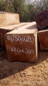 Doussie Hardwood Logs - Doussie/ Tali Square Logs 60+ cm