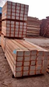 Sawn And Structural Timber South America - Eucalyptus Railway Sleepers Common & select from Brazil, Santa Catarina