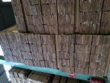 Find best timber supplies on Fordaq - TIMBEX (Timbex Iberica, S.L.) - Blackwood Acacia ( Acacia Melanoxylon)