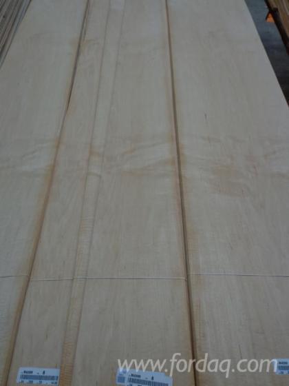 Maple-Short-Panel-20-000