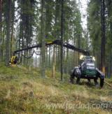 Forest Services - Mechanized Felling Ярославская Область, Russia