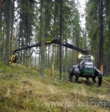 Forest Services - Mechanized Felling from Russia