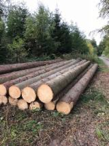 Germany Softwood Logs - Spruce 25+ cm ABC Saw Logs from Germany