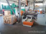 Ljuštenje Furnir Za Prodaju - Topola Klon L214, Ljušteno