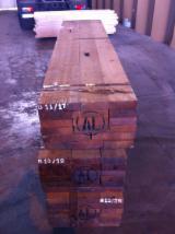 Quarter Cut Teak Planks, AD