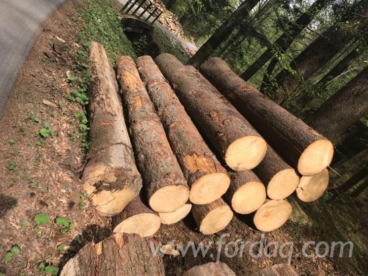 Pine--Spruce-Saw-Logs