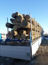 Fordaq wood market - Logs transport from France to North Italy