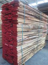 Sawn And Structural Timber - Oak Loose Italy