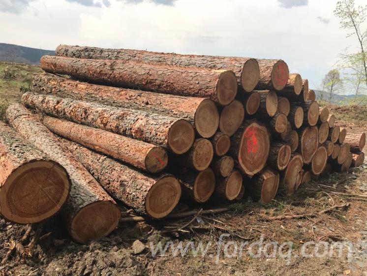 Spruce--Pine-Saw-Logs