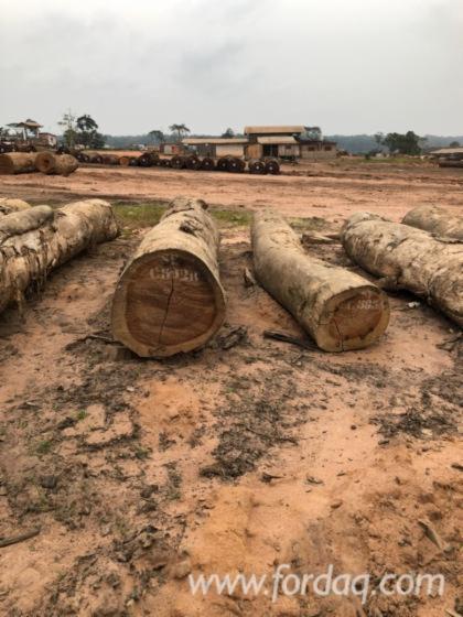 Bosse-Saw-Logs