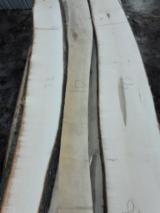 En iyi Ahşap Tedariğini Fordaq ile yakalayın - Timberlink Wood and Forest Products GmbH - Kenarları Biçilmemiş Kereste – Loose, Akçaağaç