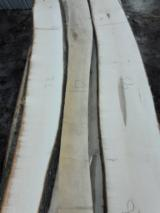 Unedged Maple Timber, 50 mm, AB