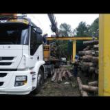 Wälder Und Rundholz Südamerika - Schnittholzstämme