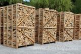 劈切薪材 – 未劈切 碳材/开裂原木 棕色白蜡树