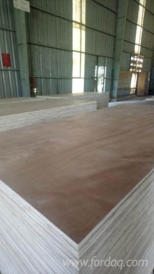 Okoume/Bingtangor/White BirchPlywood for Furniture (Carb-P2, EPA Certified)