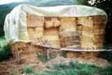 薪材、木质颗粒及木废料 - 其它能源产品 稻草