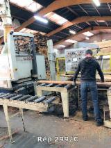 Strojevi, Strojna Oprema I Kemikalije Za Prodaju - Cirkular Za Paranje RAIMANN ProfiRip KR 450 M Polovna Francuska